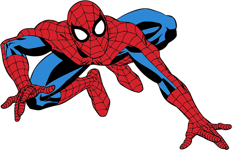 Spider Man Amazing Vinyl Decal Housewares FN47 Superhero Kids Room Nursery Decor Comics Wall Art Spider Man Decal Spider Man Sticker
