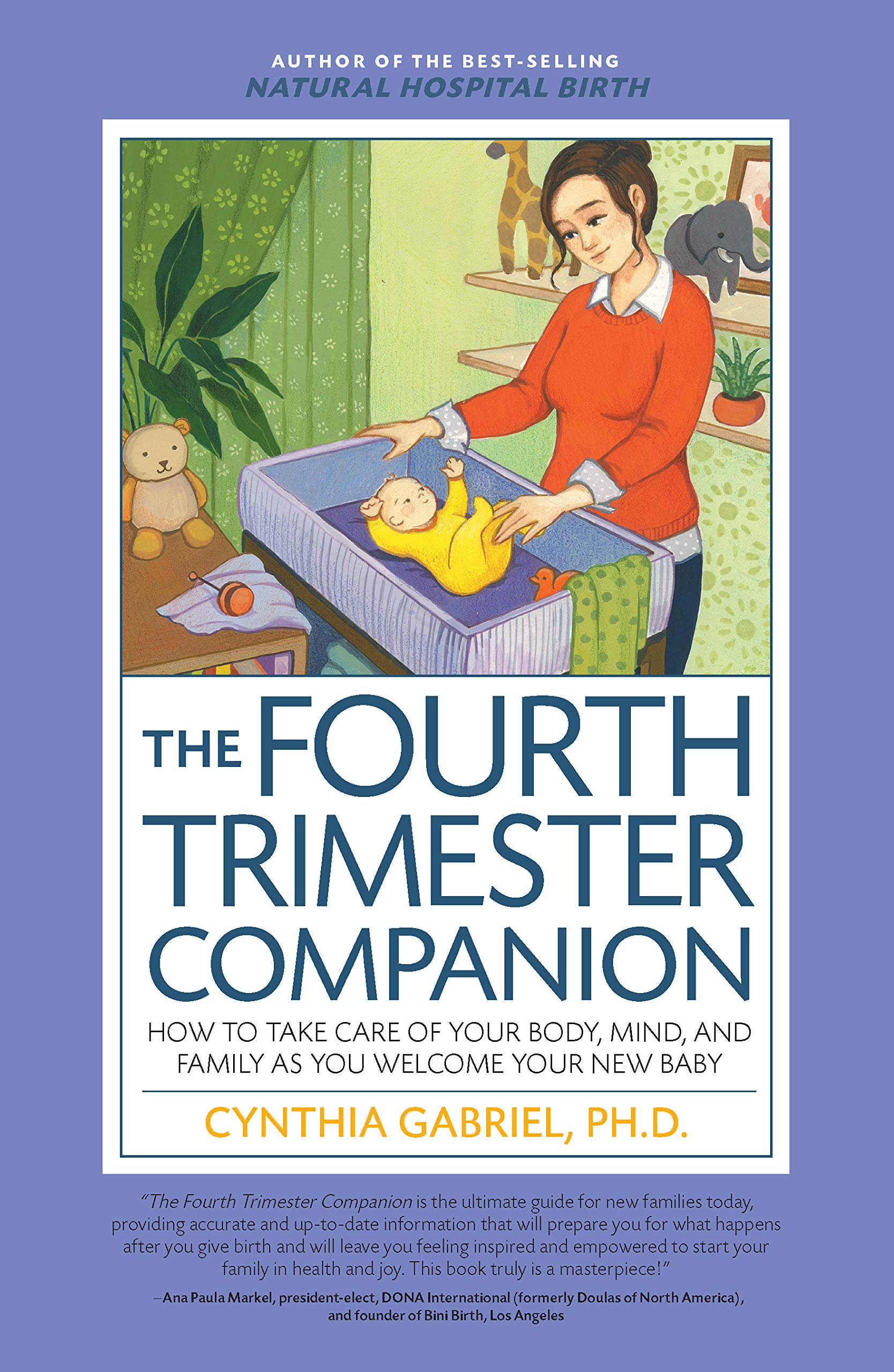 53104433e950e The Fourth Trimester Companion: How to Take Care of Your Body, Mind ...