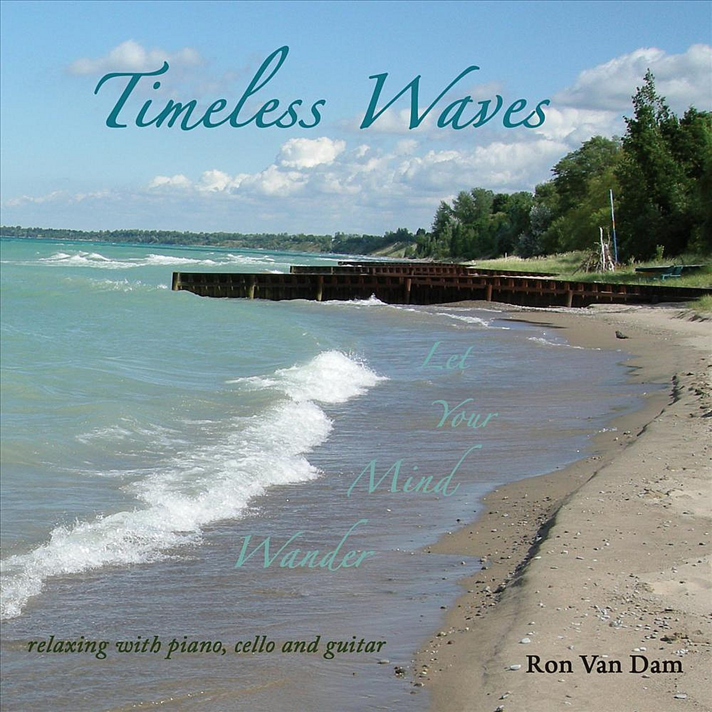 Timeless Waves: Ron Van Dam: Amazon.es: Música