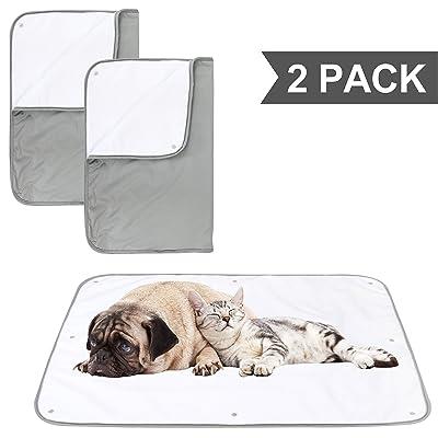 Paw Legend Multiple Sizes Waterproof Dog Blanket