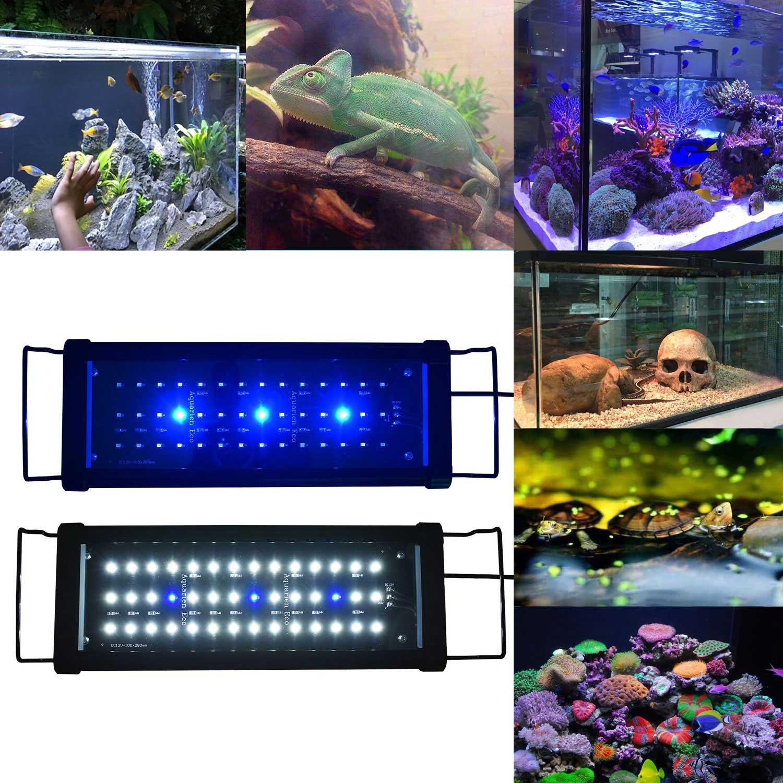 Aquarien ECO Lámpara de Acuario Luz de Acuario Azul Blanco LED 2835 SMD 2 Modos Extensibles con Iluminación de Enchufe para Acuario de Peces(30cm): ...