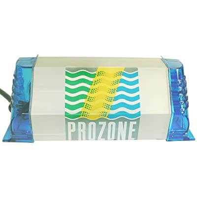 Prozone Water Products PZ1 110v Ozone System Generator for Spas, Silver : Hepa Filter Air Purifiers : Garden & Outdoor