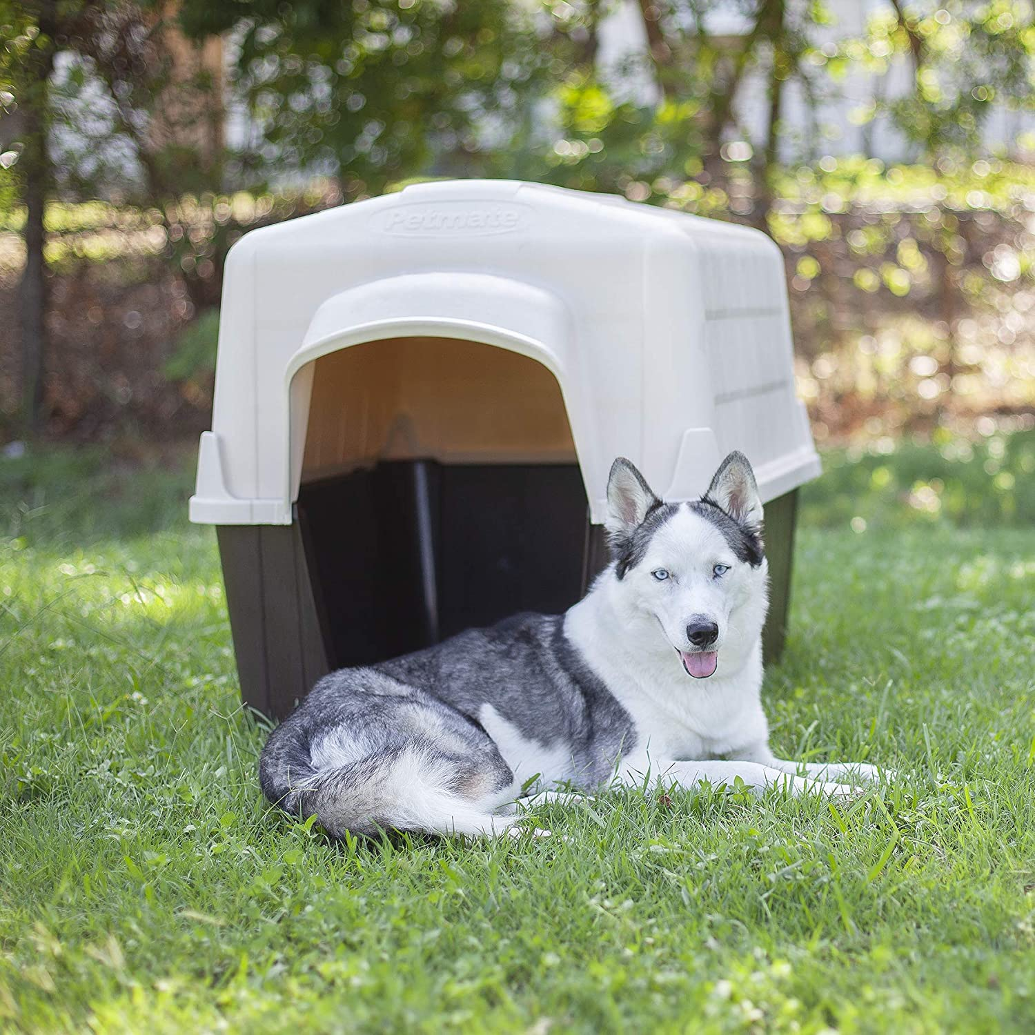 Petmate Aspen Pet Petbarn Dog House Snow and Rain Diverting Roof Raised Floor No-Tool Assembly 4 Sizes Available, Multi, UP to 15 LBS : Dog Houses : Pet Supplies
