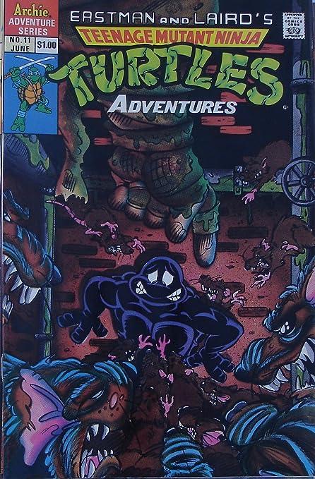 Amazon.com : Teenage Mutant Ninja Turtles Adventures Comic ...