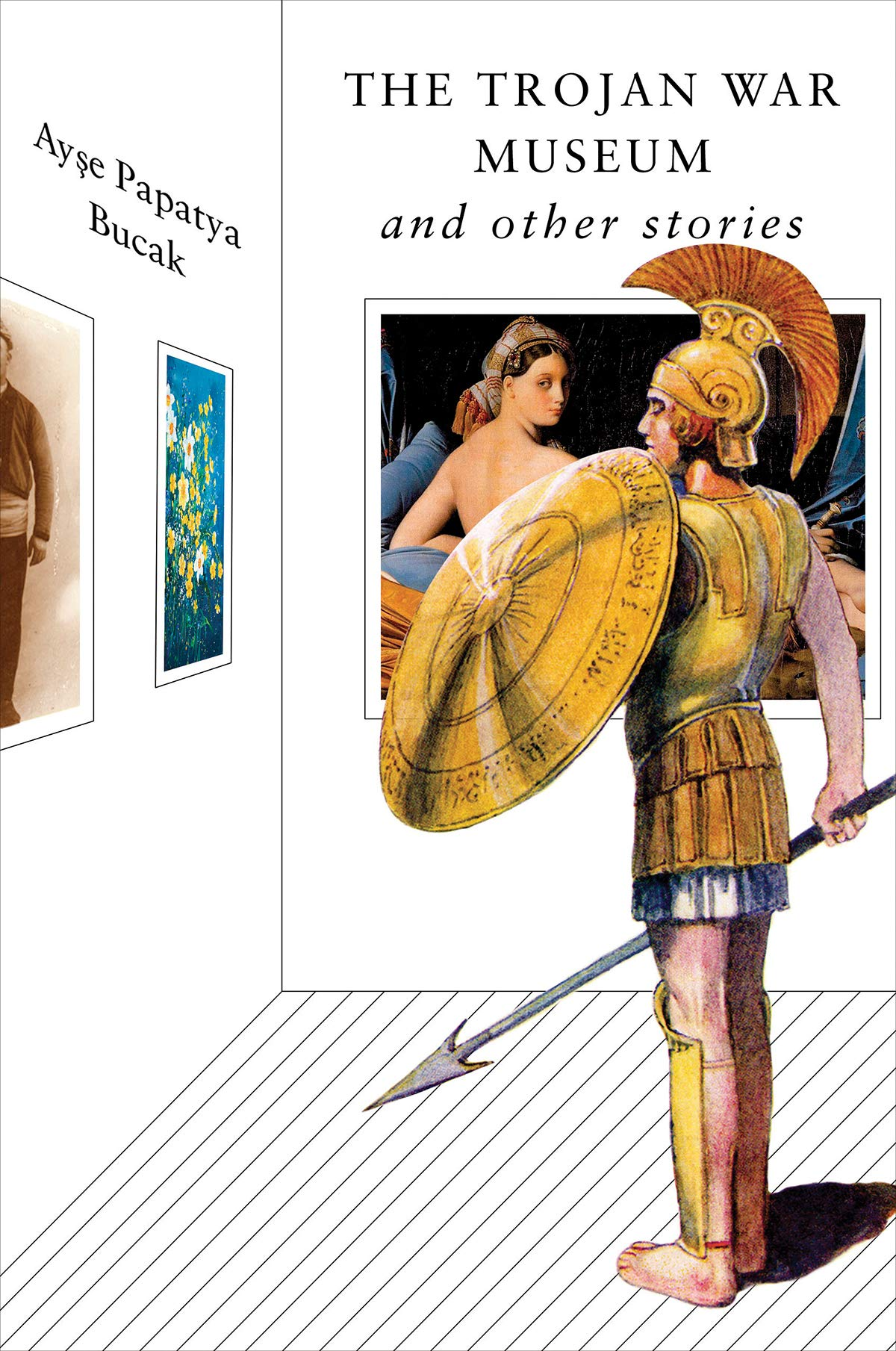 The Trojan War Museum: and Other Stories: Bucak, Ayse Papatya:  9781324002970: Amazon.com: Books
