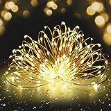 MORECOO イルミネーション ライト 充電式 10M 100 LED電球 屋外 装飾 防雨 イルミネーション 電飾 フェアリーストリングライト デコレーション 正月 クリスマス 結婚式 パーティ 飾り (ウォームホワイト)