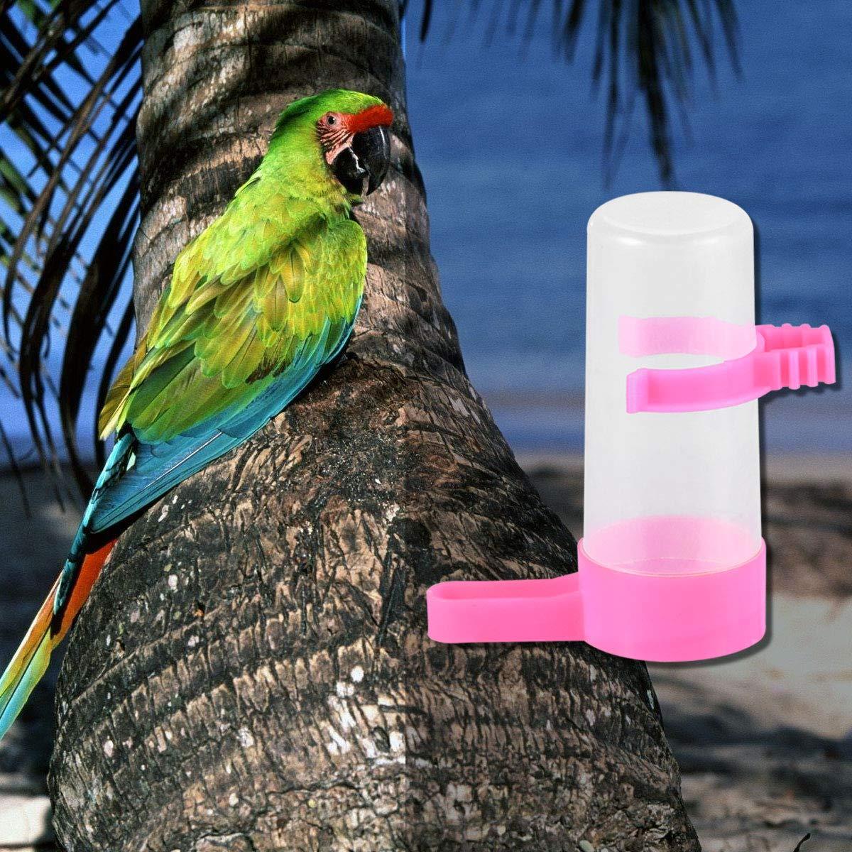 POPETPOP 10 Piezas Bebedero de Pájaros Automático para Loros Mascotas (Color al Azar): Amazon.es: Productos para mascotas