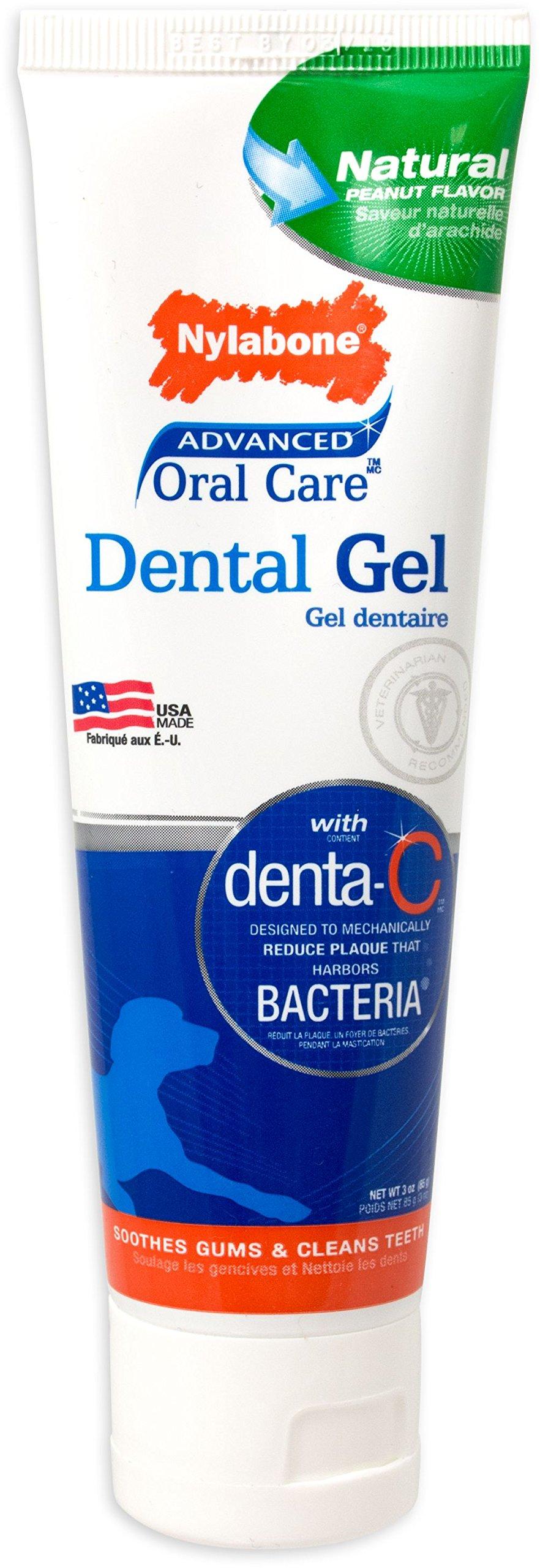 Nylabone Advanced Oral Care Triple-Action Toothbrush & Dental Gel, 1ct
