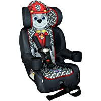 Nickelodeon KidsEmbrace Toddler Car Seat