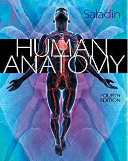 Human anatomy 4 mckinley amazon human anatomy 4th edition fandeluxe Image collections