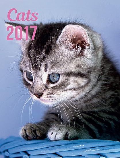 Yvon Agenda 2017, diseño de gatos, con cierre magnético [idioma español no garantizado