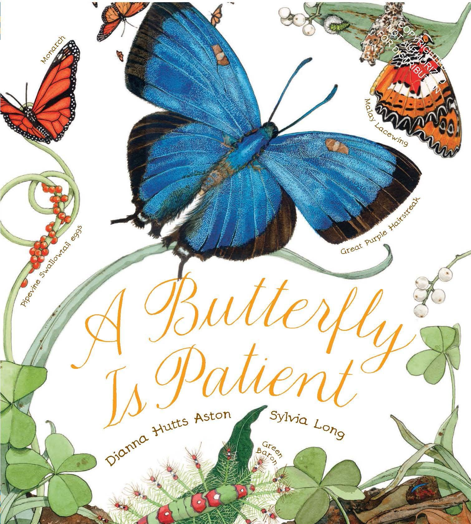 a butterfly is patient nature books dianna aston sylvia long