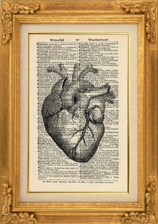 Anatomisches Herz Kunstdruck, Vintage, Kunstdruck, Schwarz/Weiß ...