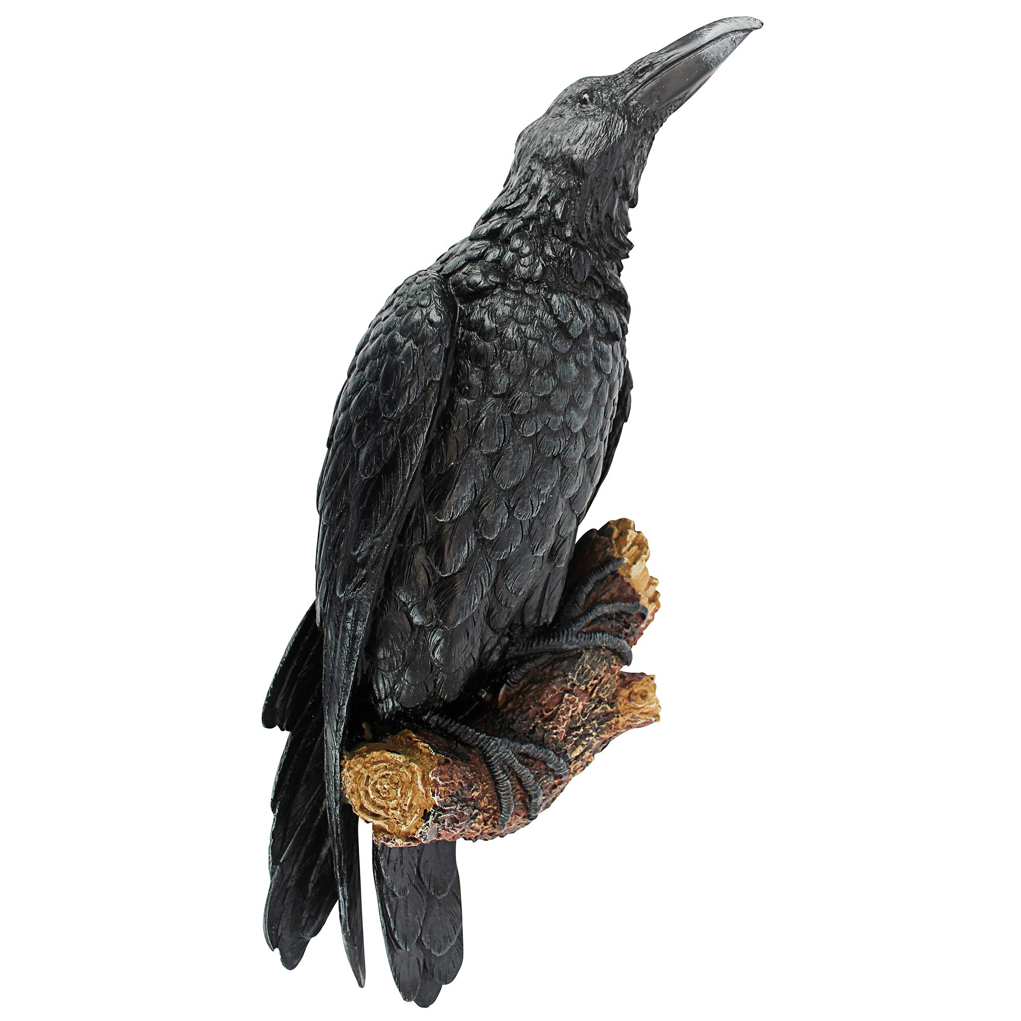 Design Toscano The Raven's Perch Halloween Gothic Decor Wall Sculpture, 18 Inch, Polyresin, Full Color