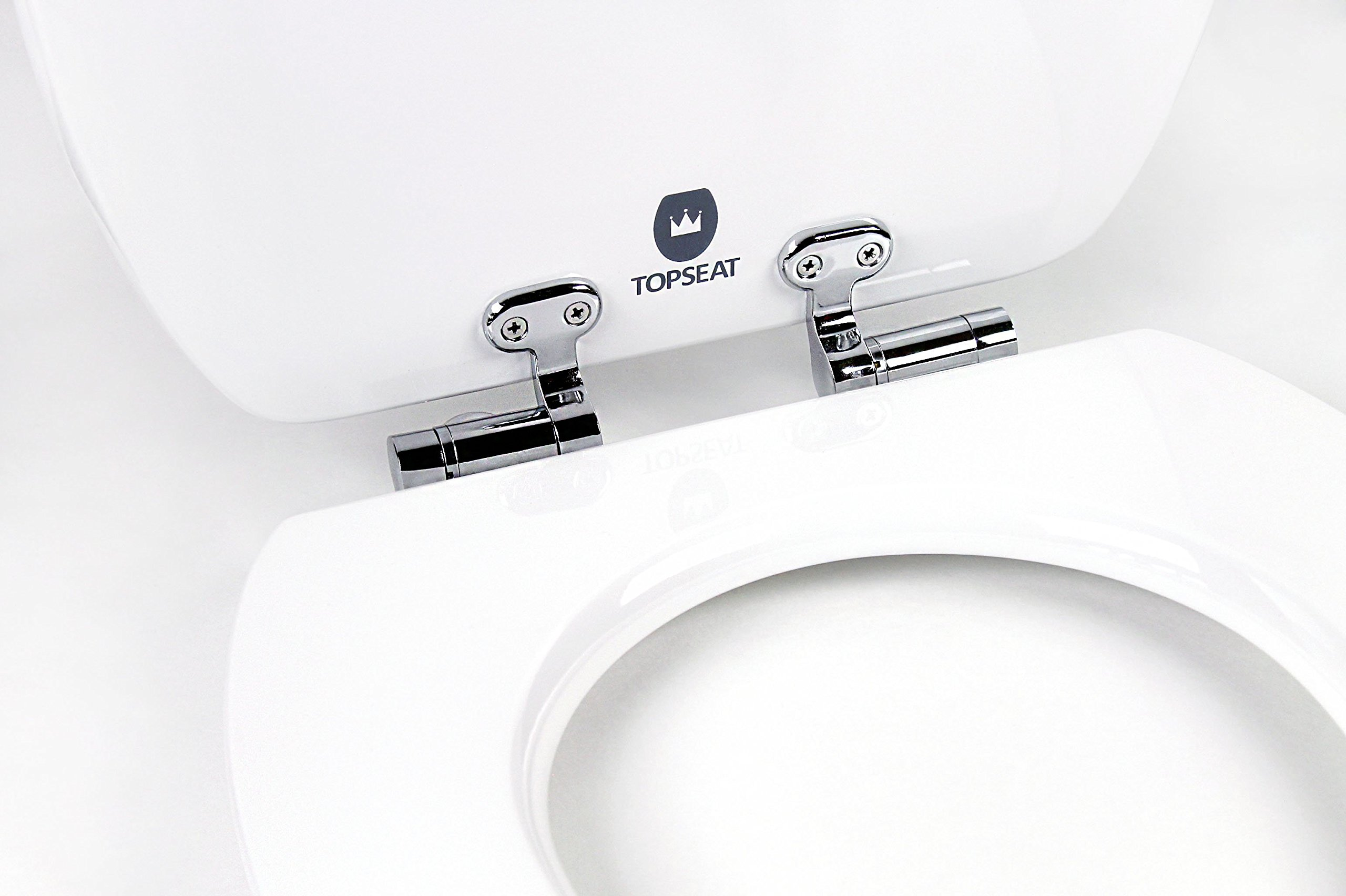 Topseat Art Of Acryl Elongated Wood Toilet Seat With Slow