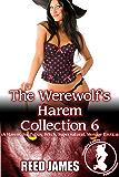 The Werewolf's Harem Collection 6: (A Harem, Succubus, Witch, Supernatural, Menage Erotica)