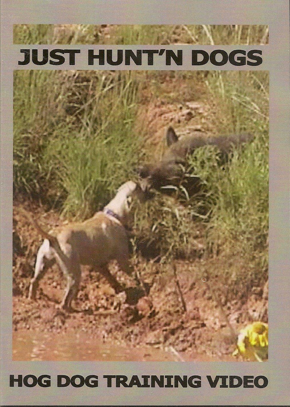 Amazon com: Just Hunt'n Dogs ~ Hog Dog Training ~ Wild Boar