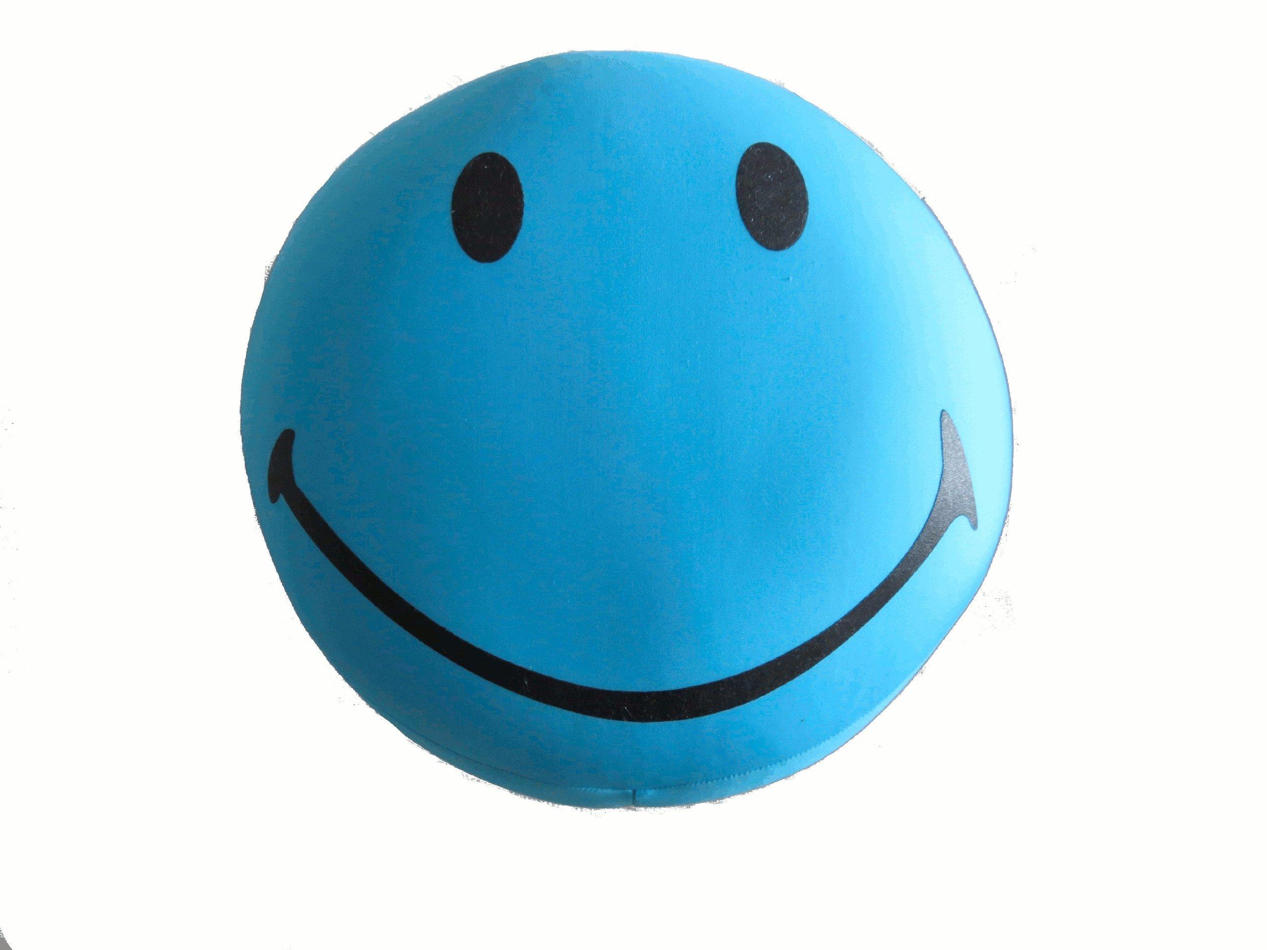 Tache Fun Squishy Smiley Face Microbead Pillow Blue