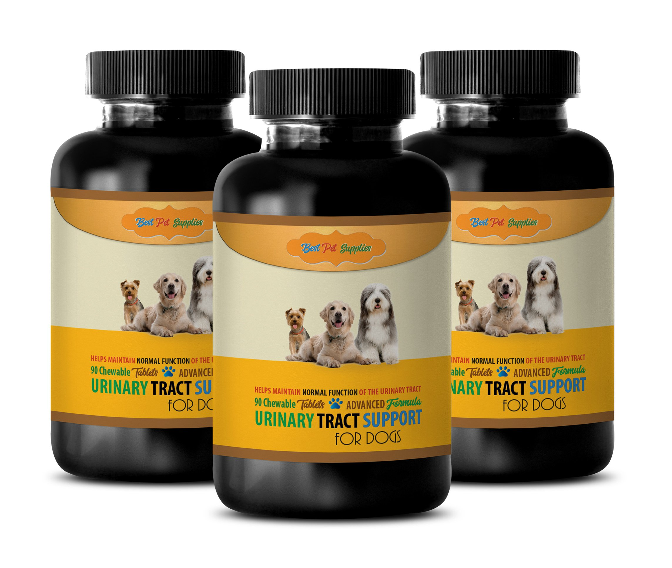 BEST PET SUPPLIES LLC dog bladder infection - ADVANCED URINARY TRACT SUPPORT - FOR DOGS - CHEWABLE - POWERFUL DOG FORMULA - dog urinary support - 270 Chews (3 Bottle) by BEST PET SUPPLIES LLC