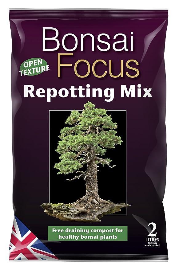 2 opinioni per Growth Technology- Bonsai Focus, Miscela per il rinvaso di bonsai, 2 l