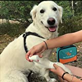 iCare-Pet Pet First Aid Kit with Thermometer and