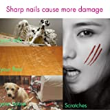 Dogs' Nail Trimmer, Cats' Paws Clipper, Small Pet