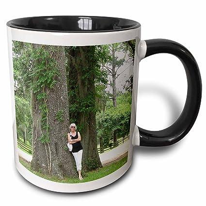 amazon com 3drose edmond hogge jr live oaks with spanish moss