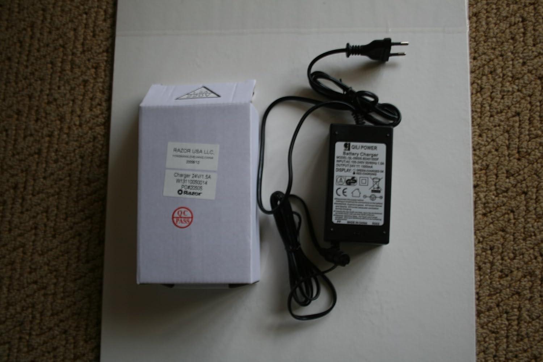 Eléctrico E Patinete de batería para 24 V, Razor E200 E300 ...