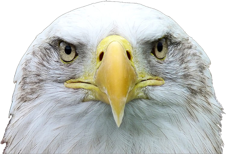 USA Eagle Seal American Flag Sticker Decal Car Truck Auto Laptop Wall Window