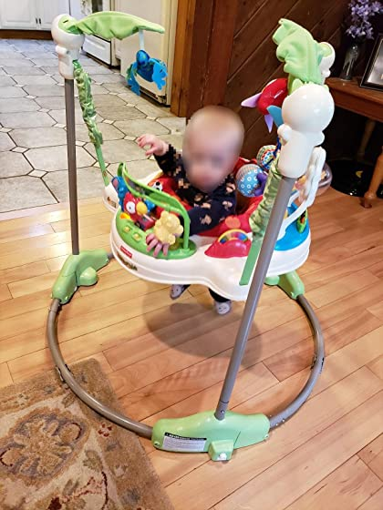 Fisher-Price Rainforest Jumperoo My son LOVES this jumperoo! And it has good music!