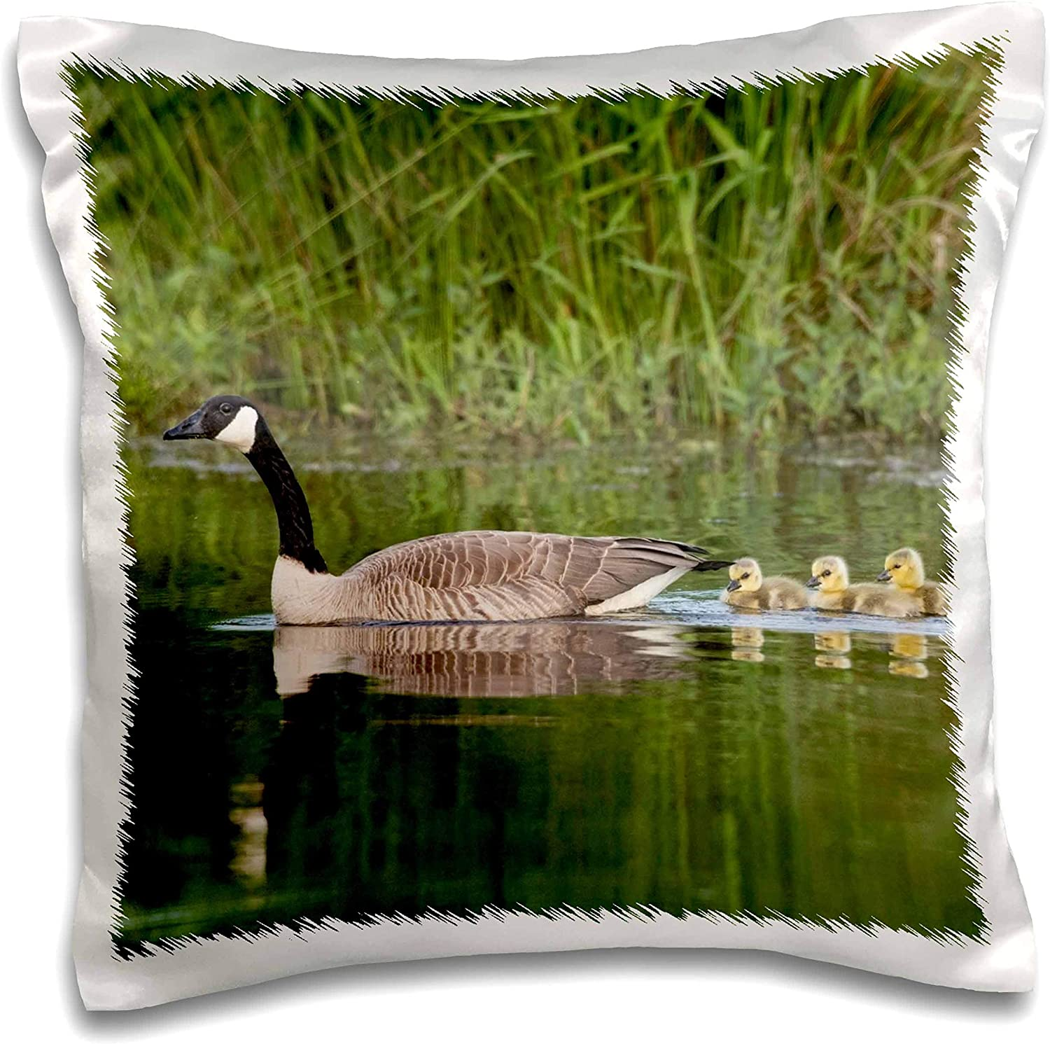 3dRose Canada geese with newly hatched goslings - Pillow Cases (pc_330614_1)