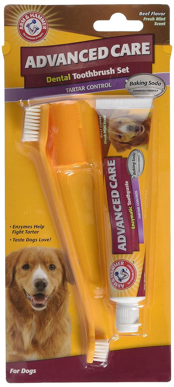 Arm & Hammer AHTS Conjunto de Cepillo y Pasta de Dientes con Sabor a Ternera Advanced Care Tartar Control: Amazon.es: Productos para mascotas