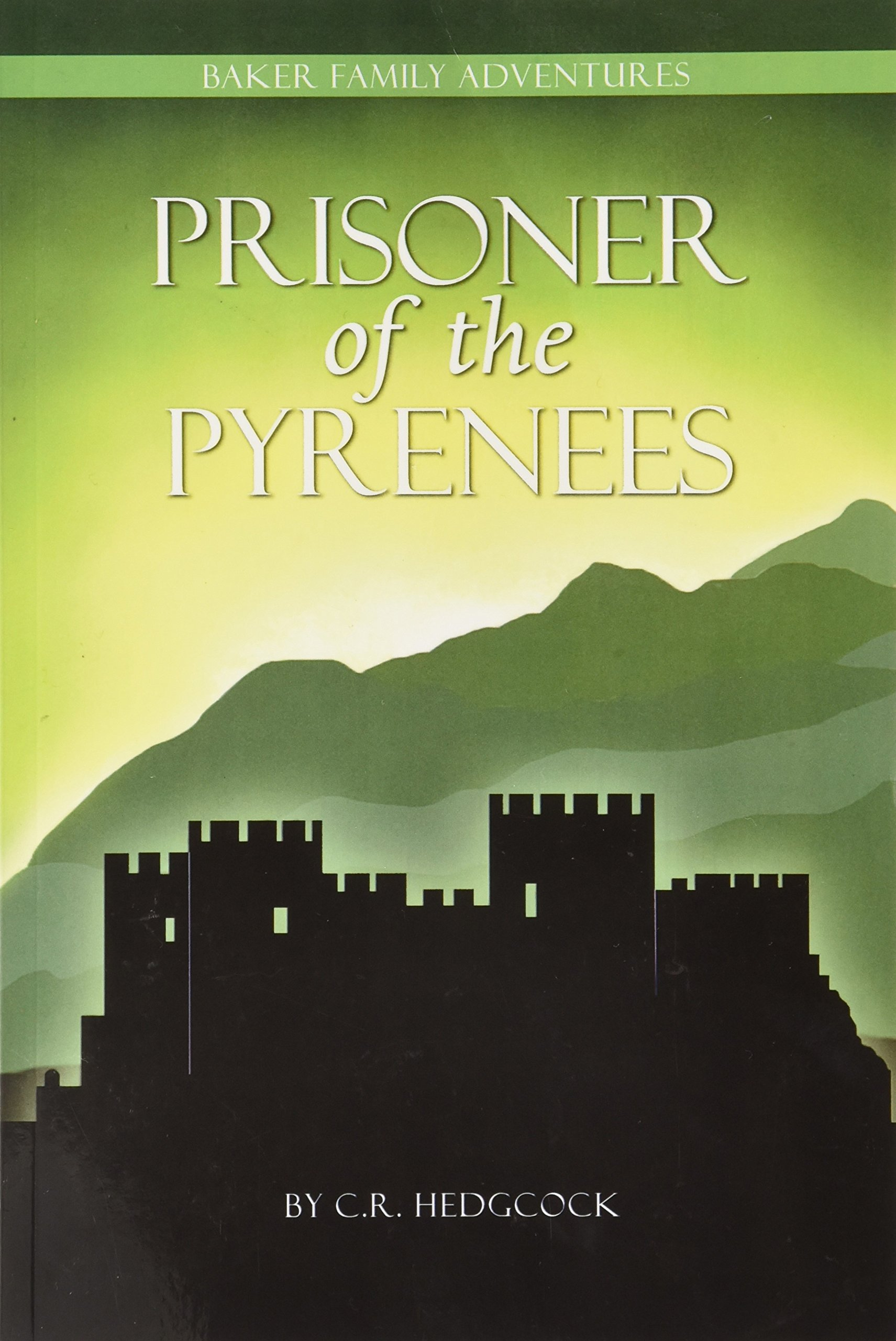 Image result for Prisoner of the pyrenees by c.r. hedgcock