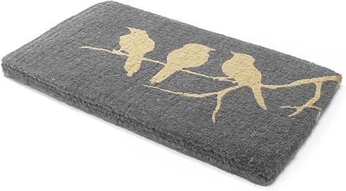 Handwoven, Extra Thick Doormat Durable Coir, Easy Clean, Stylish Entryway Door mat for Patio, Front Door Decorative All-Season Birds on Branch 24 x 36 x 1.60
