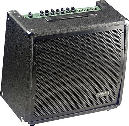 amazon com stagg 60 ga r usa 60 watt rms 2 channel guitar amplifier