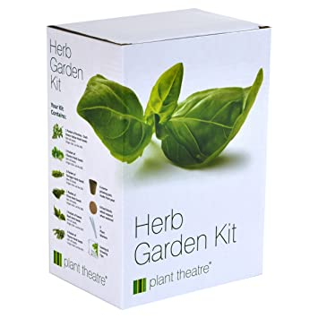 Herb Garden Seed Kit Gift Box 6 Different Herbs to Grow Amazon