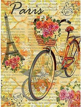 Family Flags, Torre Eiffel De París Retro con Flores De Bicicleta Decoración De La Casa para El Hogar Banderas De Jardín De Poliéster para Fiesta De Jardín Familiar 70x102cm: Amazon.es: Jardín