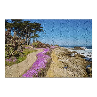 Monterey Bay, California - Purple Flowers Line a Dirt Path Down to The Beach 9019013 (Premium 500 Piece Jigsaw Puzzle for Adults, 13x19, Made in USA!): Toys & Games