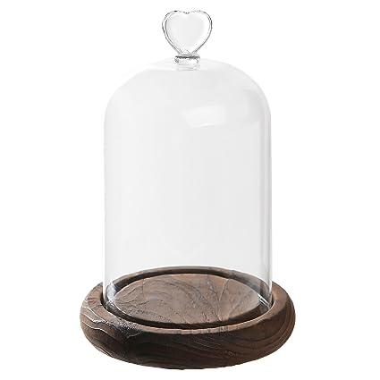 4ba14cc583f67 Amazon.com: 7 inch Mini Clear Glass & Wood Cloche Bell Jar  Centerpiece/Tabletop Display Case w/Heart Handle: Home & Kitchen