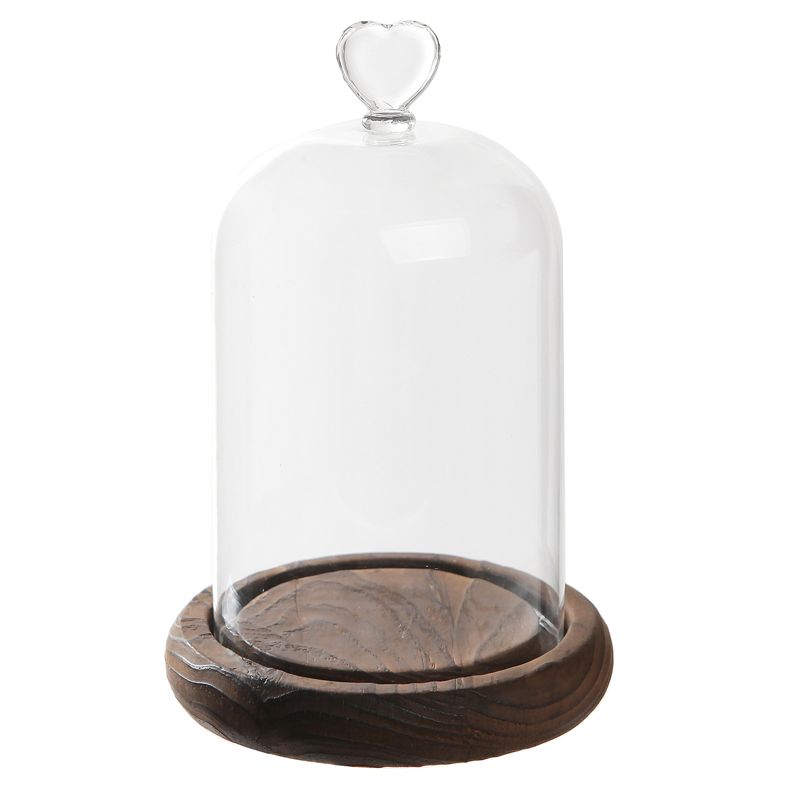 7 inch Mini Clear Glass & Wood Cloche Bell Jar Centerpiece/Tabletop Display Case w/Heart Handle by MyGift