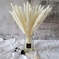 45cm Natural Dried Pampas Grass 30 Pcs for Flower Arrangements Home Decor (White)