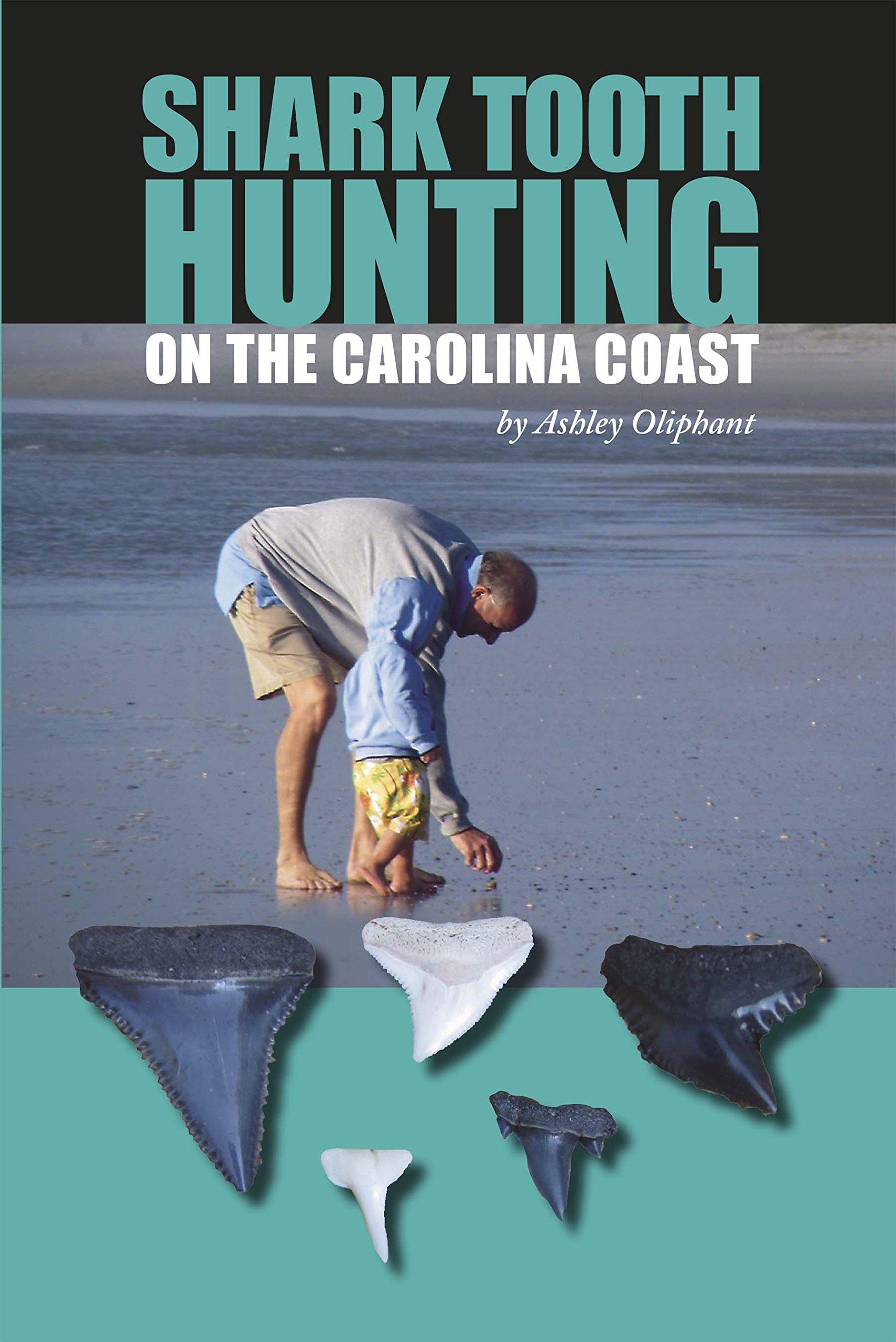 Shark Tooth Hunting Carolina Coast