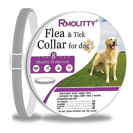 Rmolitty Collar Antiparasitario Perros Collar para garrapatas, 8 Meses de Protección para Pequeña Medio Grande