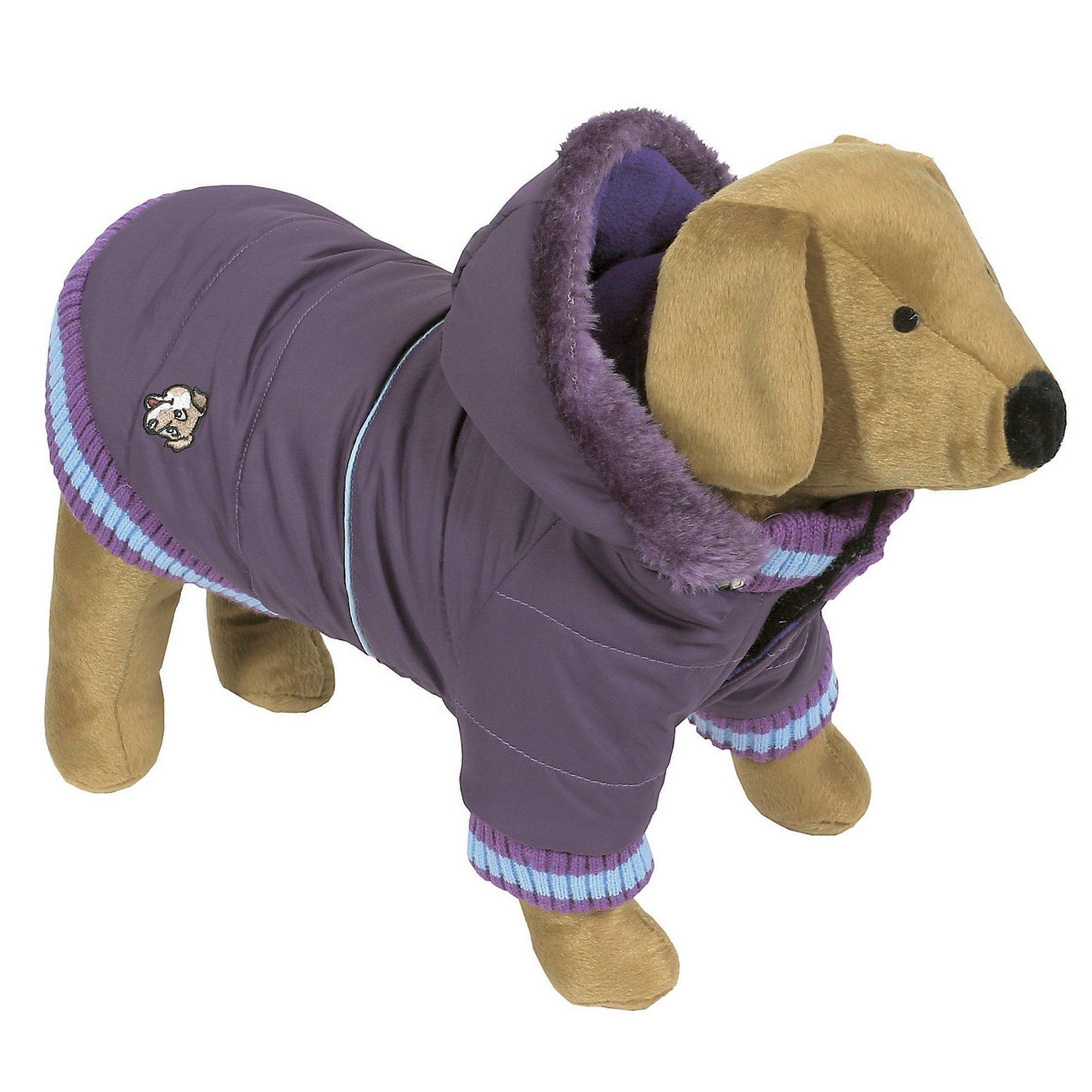 Animal Kingdom Doggy Things Dandy Parker Waterproof Dog Coat (X Small) (Purple)