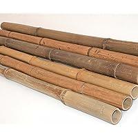 10er Set Bambusrohr 300cm mit 1,8 bis 3cm natur, gelb braun getrocknet - Bambus Rohr Bambus Latten farbige Bambusrohre Bamboo Bambus Halbschale Bambusstangen Bambusstab Rohre aus Bambus Stab