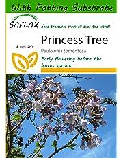 SAFLAX - Princess Tree (Paulownia tomentosa) - 200 seeds - With potting soil