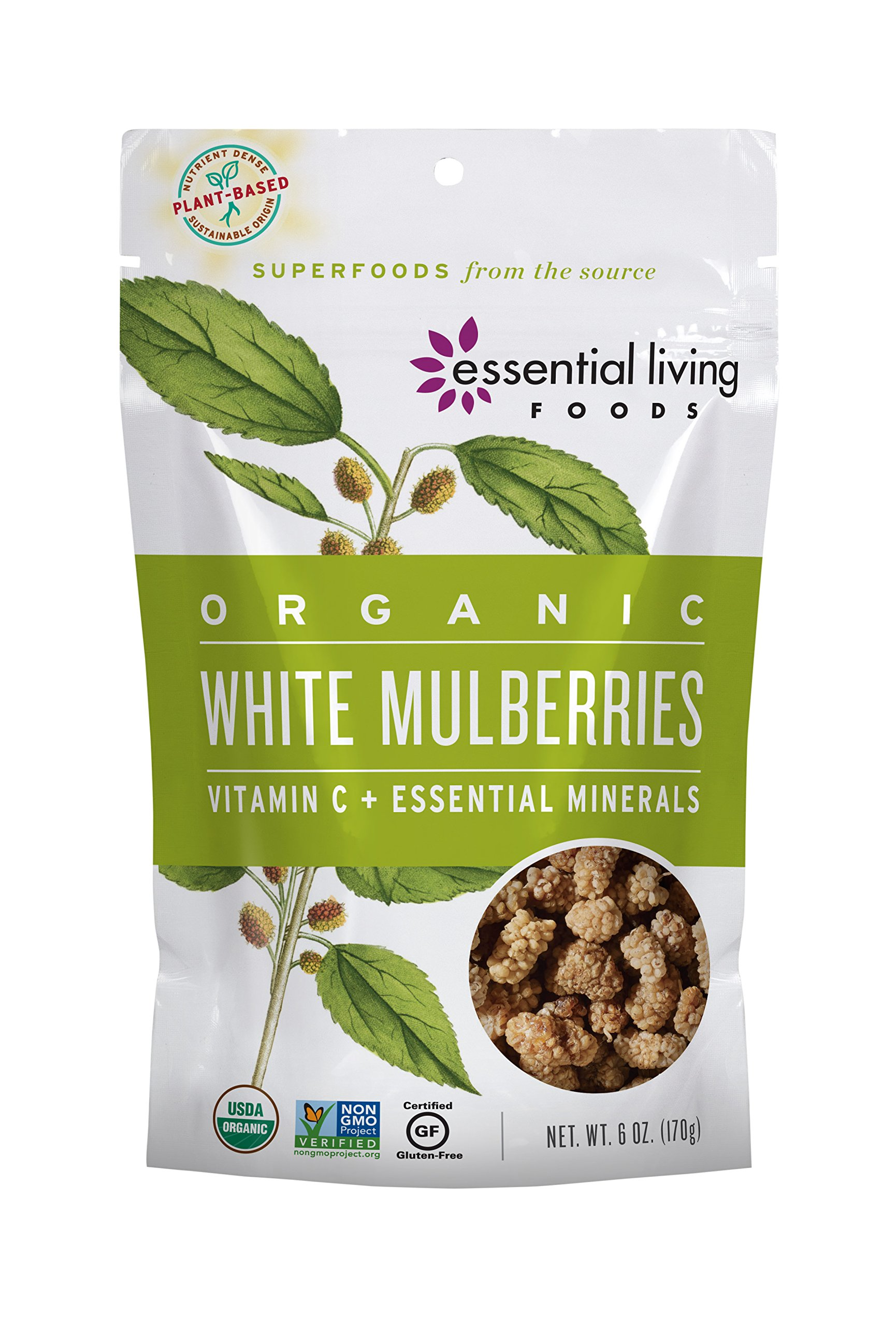 Essential Living Foods Organic White Mulberries, Sun Dried Highest Quality Mulberry, Vegan, Superfood, Non-GMO, Gluten-Free, 6 Ounce Resealable Bag