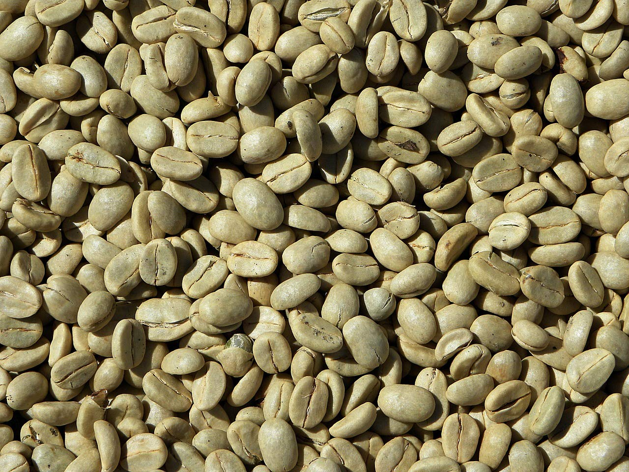 5 lbs Guatemala Green Coffee Beans - MICRO LOT, Green (unroasted) Coffee Beans, fair trade, eco friendly by Pepe Cafe