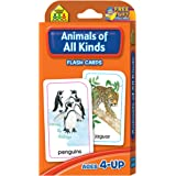 Flash Cards - Animals of All Kinds