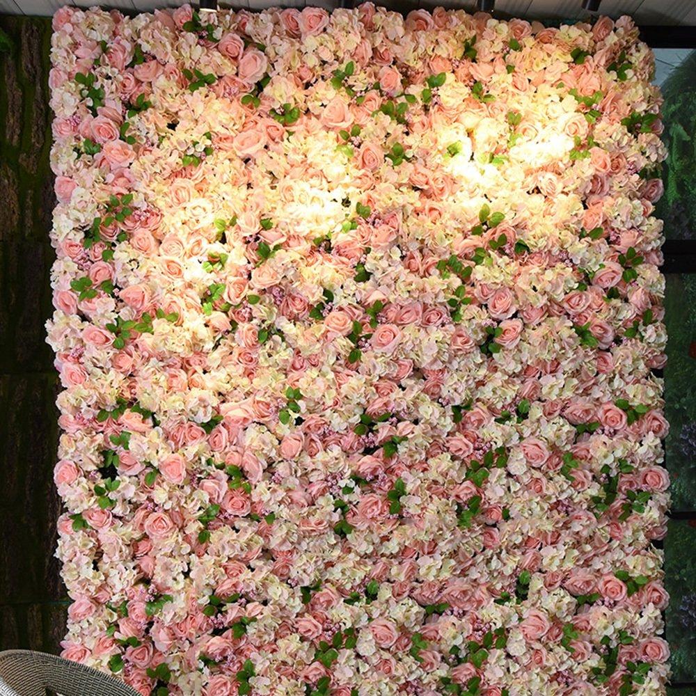 Fotohintergrund Rosen